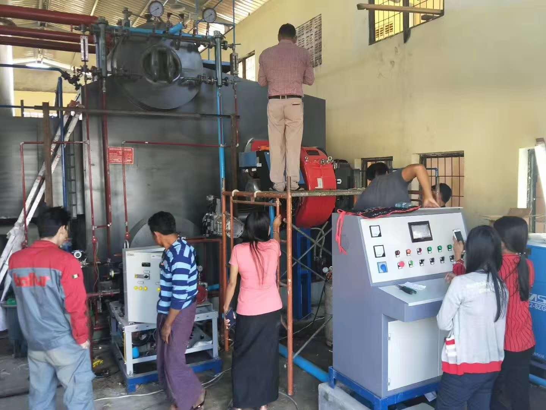 Dual fuels boiler